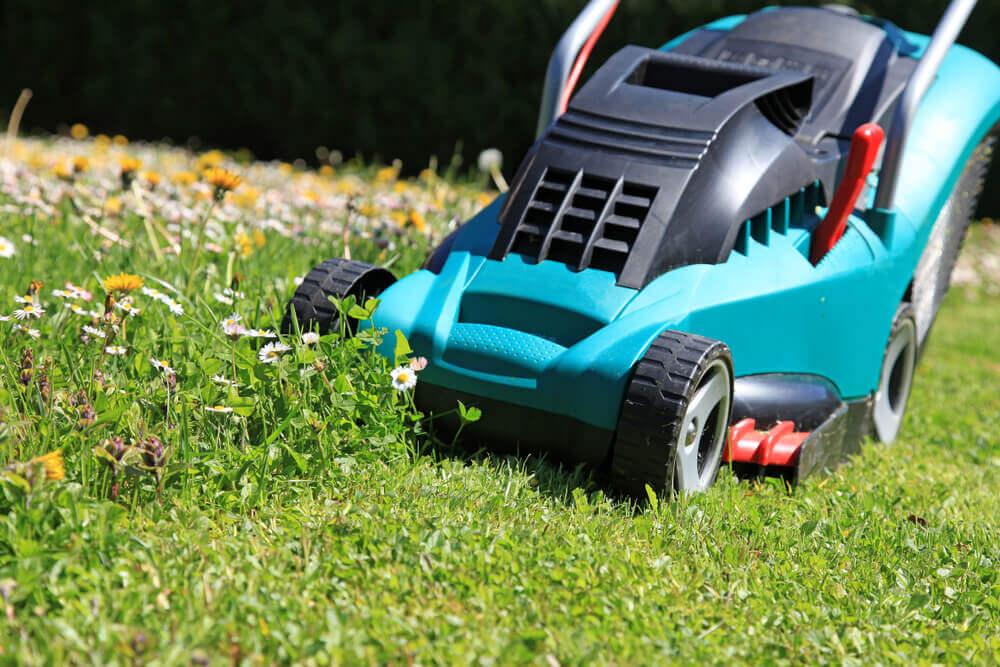 A lawnmower.