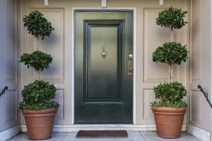 Place plants outside your front door to make the main entrance more homely.