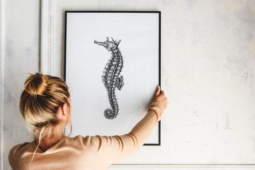 Decorating Your Home With Seahorses