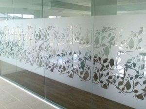 Etched glass door with vinyl decoration.