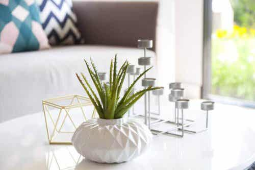 The Most Common Coffee Table Decoration Mistakes