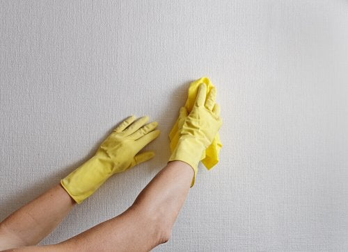 Hand with rubber gloves eliminate dust and dirt