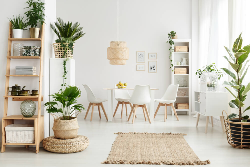 Using plants as decoration in the dining room.