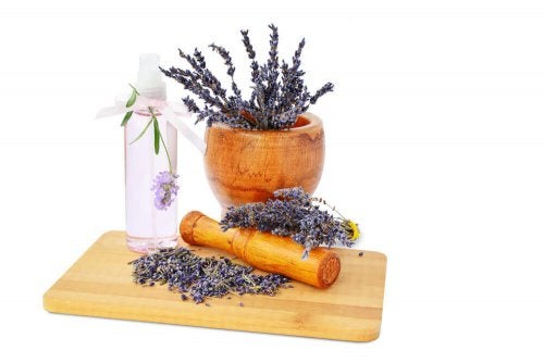 Lavender in a pot and spray bottle.