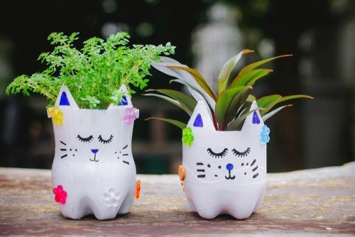 Planters made from recycled bottles are an example of sustainable decoration.