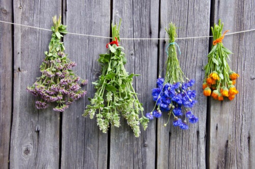 A line with multiple fragrances from the aromatic flowers in the process of drying.