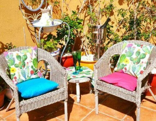 Cacti cushion covers on chairs.