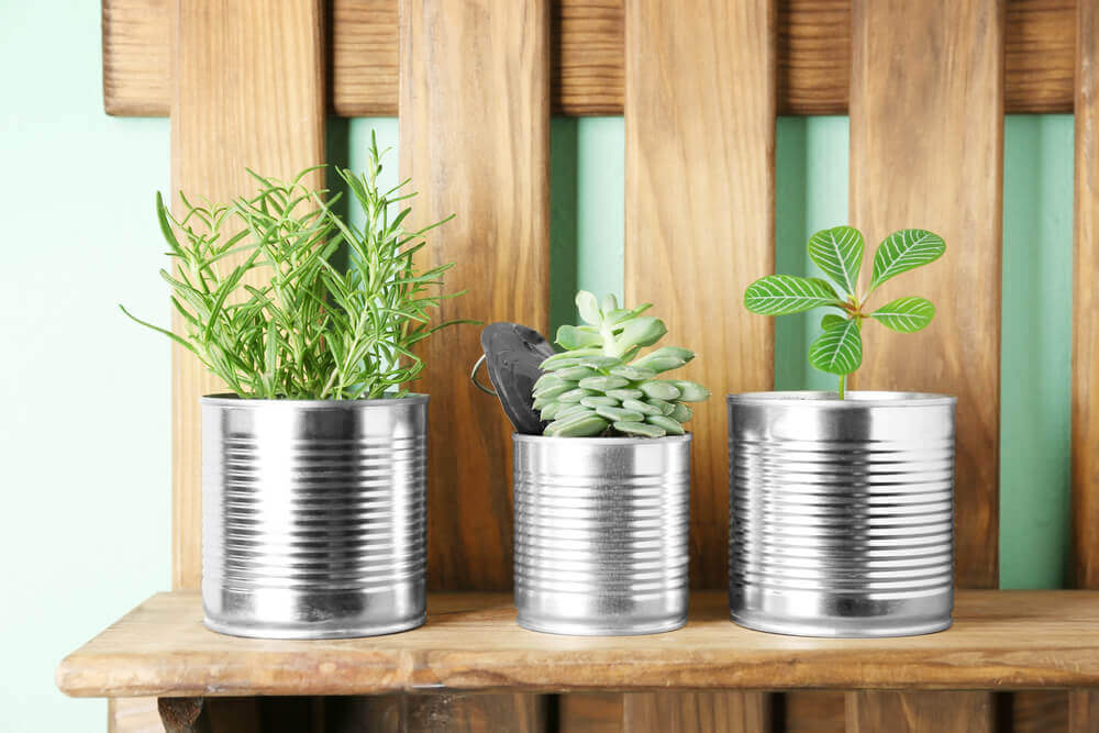 Planters made out of cans.