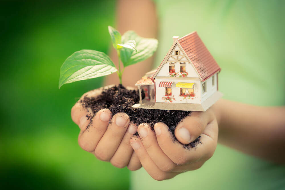 Hands holding a house and plant against a green background.