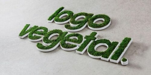 letters formed by moss