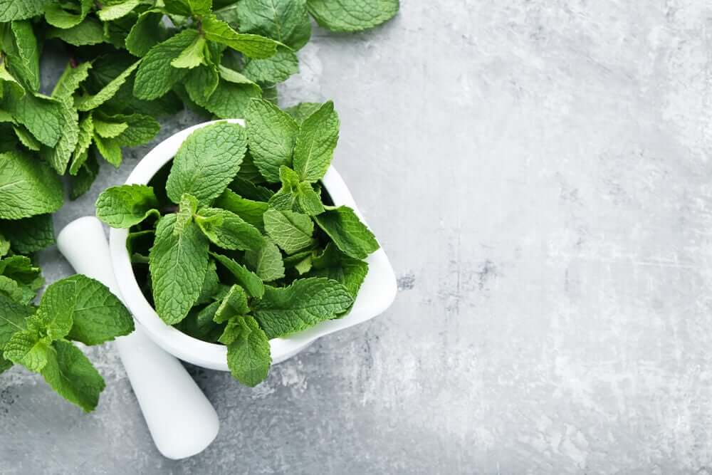A bowl of mint on a countertop.
