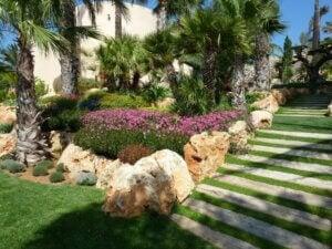 A Mediterranean garden.