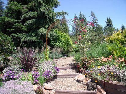 A path of a Mediterranean garden.