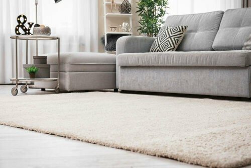 Useful Tips to Choose the Best Rug for a Room