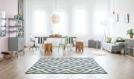 A rug with a geometric pattern is the best option for a blank canvas living room