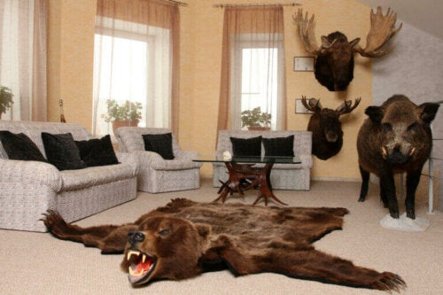 All You Need to Know About Hunting Decor