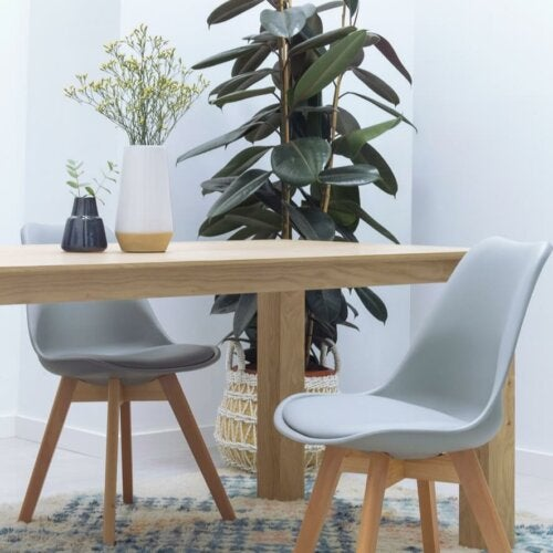 A wood table with chairs and a plant.