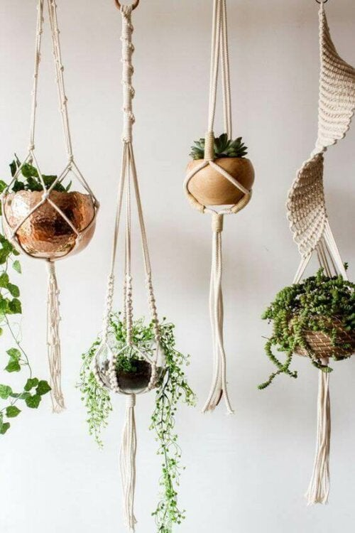Hanging plants and macramé.