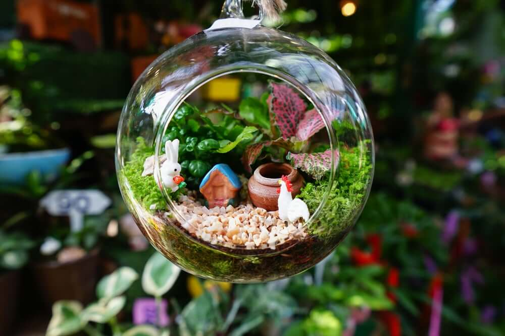 Japanese miniature garden.