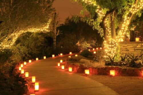 Outdoor lighting lining a path.
