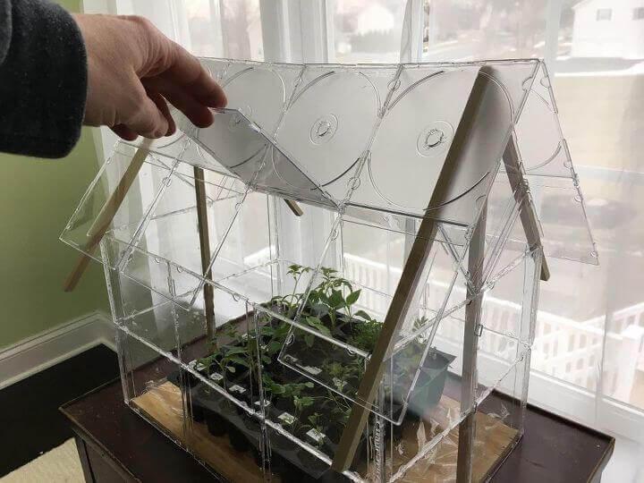 Glass terrarium shaped like a small house.