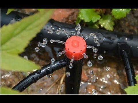 A leak in a lawn watering system.