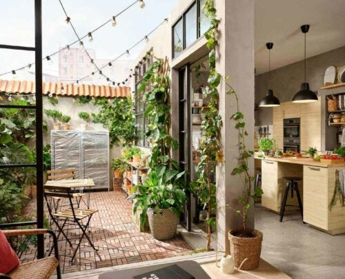 A patio and an open kitchen with a lot of plants.