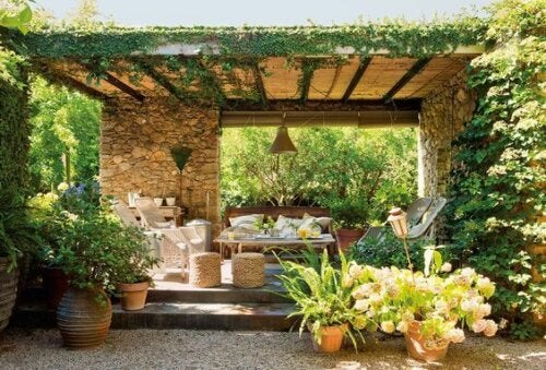 An outdoor patio full of plants.