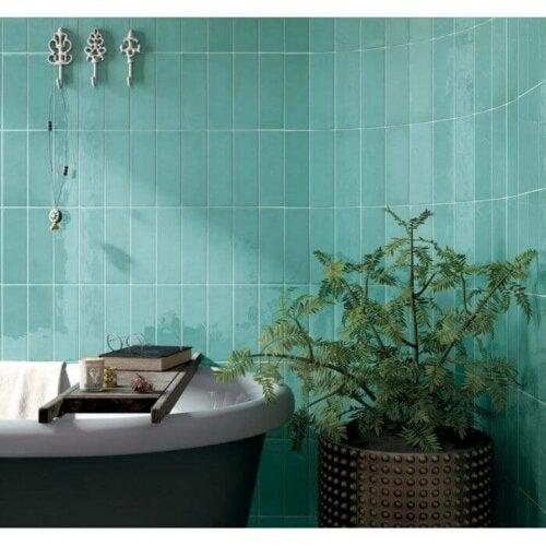 A bathroom with a plant.