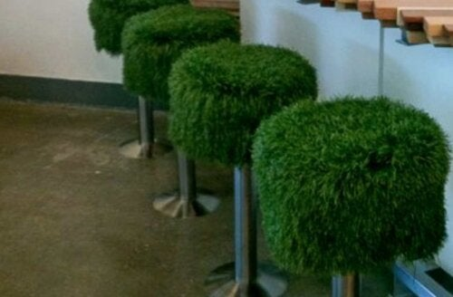 Some fuzzy green bar stools.