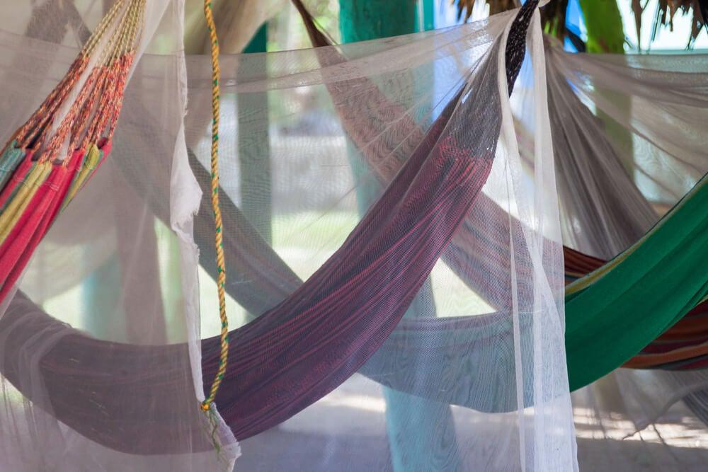 A mosquito net.