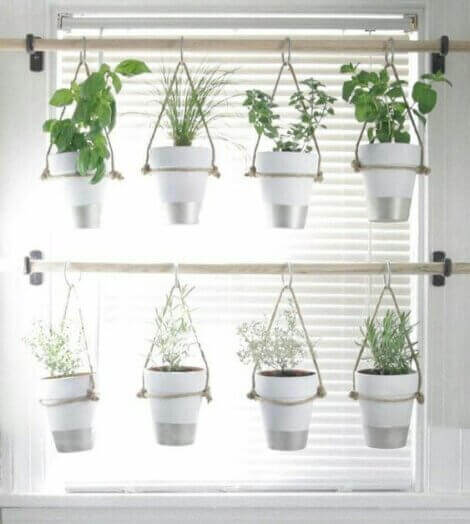 Pots with aromatic plants hanging by a window