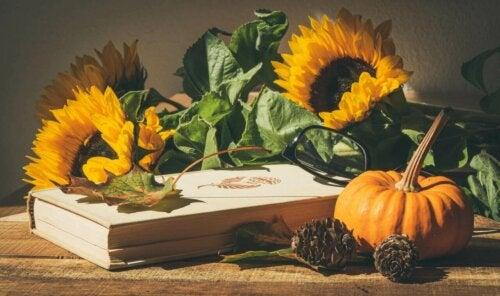 Pumpkins as decorative elements.