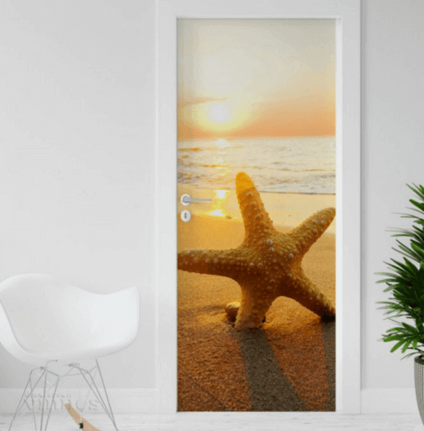 Photo of a framed starfish on the wall