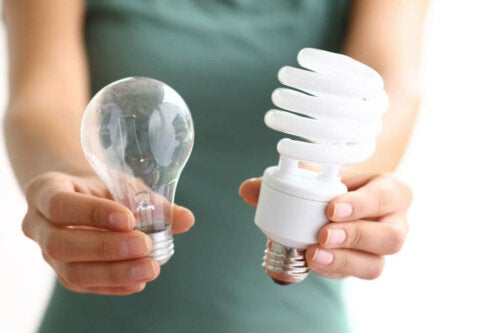 A person holding two types of bulbs that help reduce the light bill.