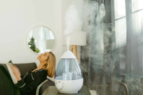 Solutions to Fight Indoor Dryness
