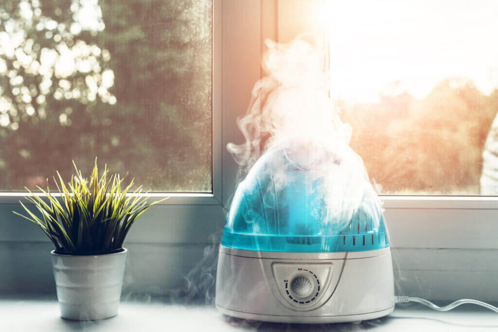 The Differences between Humidifiers and Diffusers
