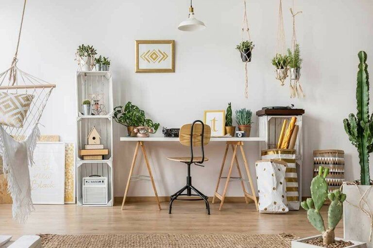 6 Plants for Small Apartments